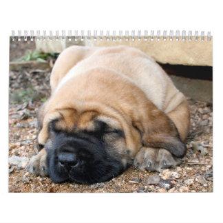 Calendario del mastín el dormir