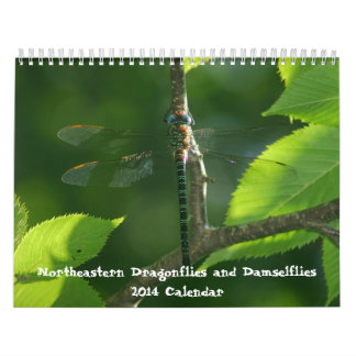 Calendario del noreste de los Damselflies de las