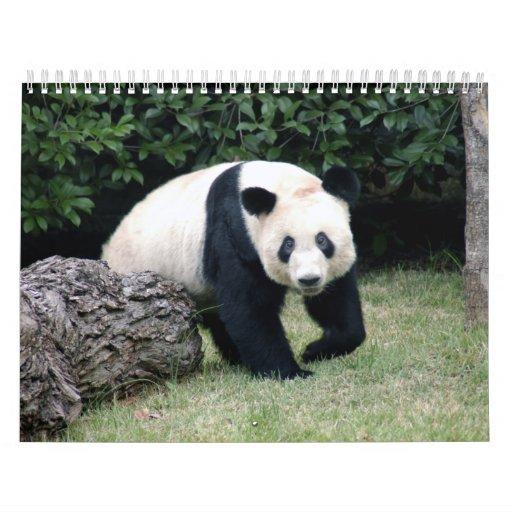 Calendario del oso de panda gigante