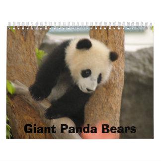 Calendario del oso de panda gigante, osos de panda
