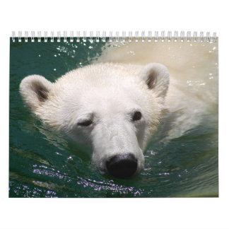 Calendario del oso polar