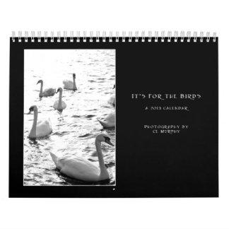 Calendario del pájaro de 2013 irlandeses