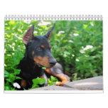 Calendario del perrito del Doberman