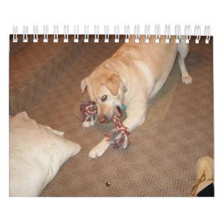 Calendario del perro