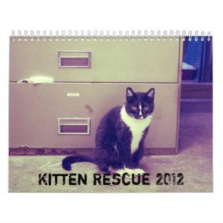 Calendario del rescate 2012 del gatito