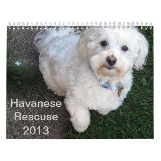 Calendario del rescate de Havanese