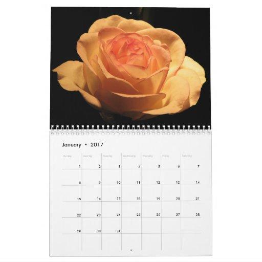 Calendario divino de los rosas