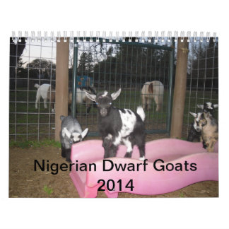 calendario enano nigeriano de la cabra 2014