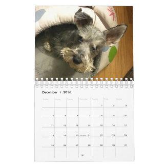Calendario estupendo de Owen 2016
