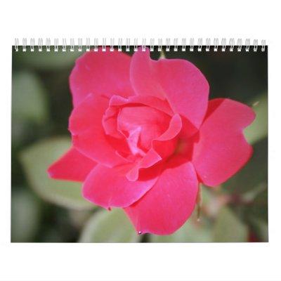 calendario floral de la fotografía del color de 12