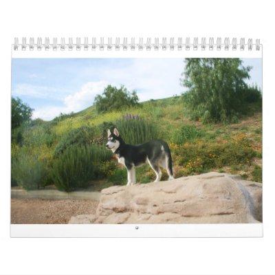 Calendario fornido 2011