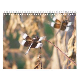 Calendario fotográfico de las imágenes