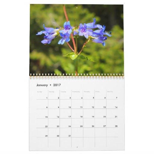 Calendario grande de los Wildflowers 2013 del país