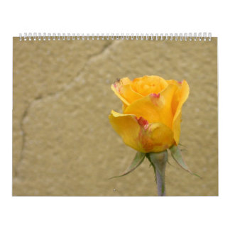 Calendario hermoso magnífico 2016 de los rosas