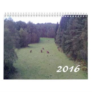 Calendario impreso foto 2016