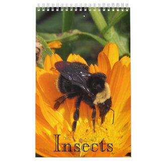 Calendario - insectos (sgl. página.)