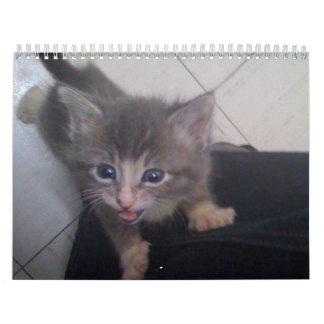 calendario kittty