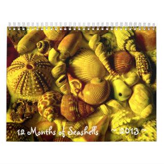 Calendario largo de la fotografía del Seashell del
