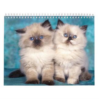Calendario lindo de los gatitos 2015