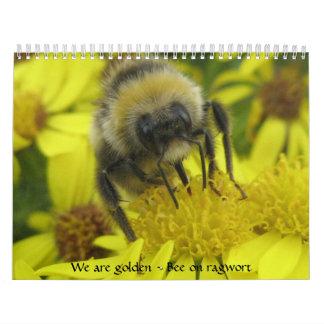 Calendario macro de los insectos