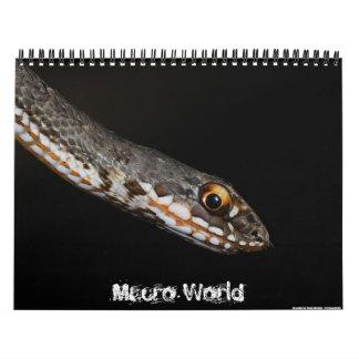 Calendario macro del mundo 2011