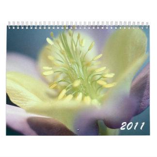 Calendario magnífico de las flores 2011