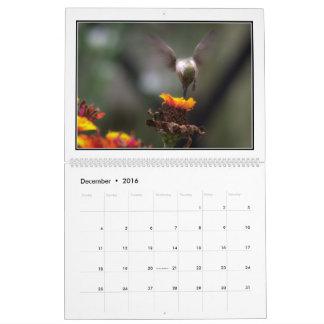 Calendario mensual de los colibríes 2016 de Tom