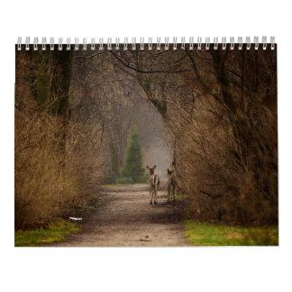 Calendario natural de la fotografía 2016 de la