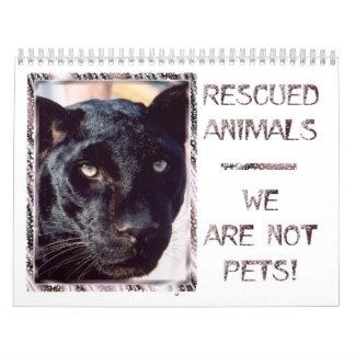 Calendario rescatado de los animales