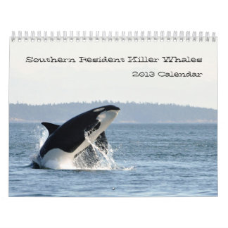 Calendario residente meridional de la orca 2013