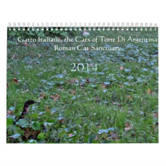 Calendario romano 2014 del santuario del gato