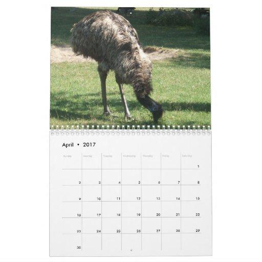 Calendario salvaje de la vida