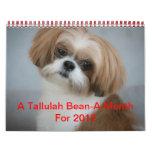 Calendario Shih lindo Tzu de la haba de Tallulah