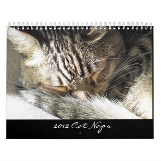 Calendario - siestas 2012 del gato