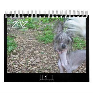 calendario sin pelo de 2012 perros