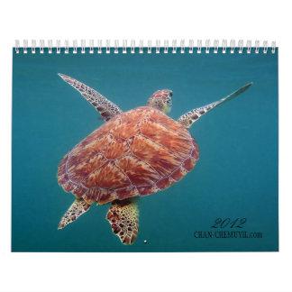 Calendario subacuático de Chan Chemuyil