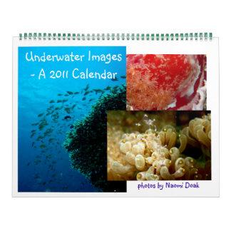 Calendario subacuático de la imagen - 2010
