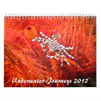 Calendario subacuático de la vida marina de 2012 v