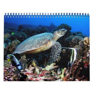 Calendario subacuático de las fotos 2012