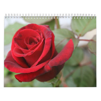 Calendario subió gratitud de los amantes