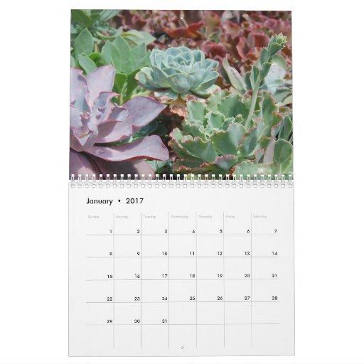 Calendario suculento 2011