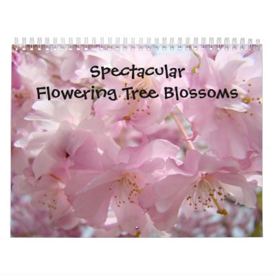 Calendars Nature Photography Tree Blossoms