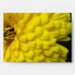 Calendula amarillo brillante