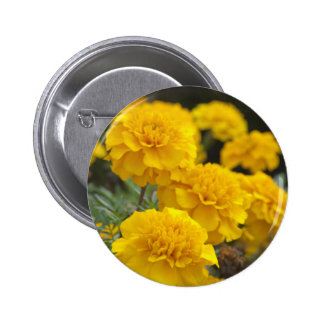 Calendula Button