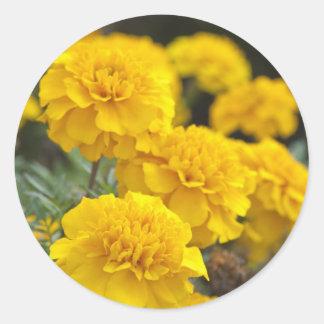 Calendula Classic Round Sticker