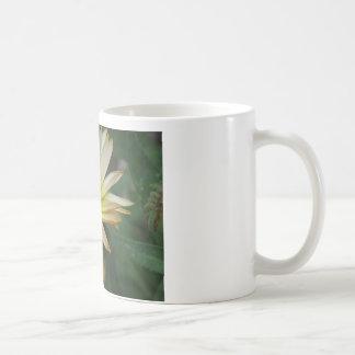 Calendula Classic White Coffee Mug