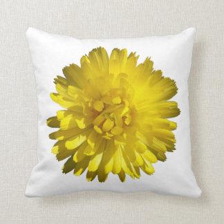 Calendula pillow