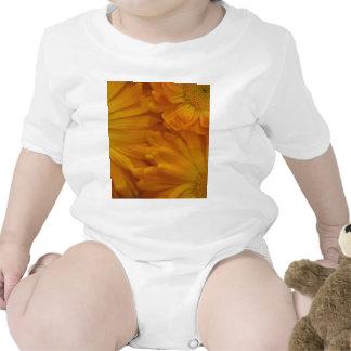 Calendula Traje De Bebé