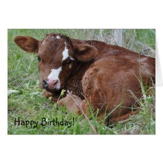 Calf birthday card