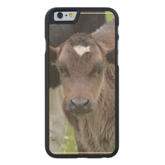 Calf Carved® Maple iPhone 6 Case